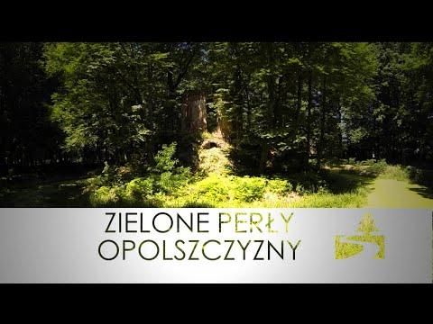 Zielone Perły Opolszczyzny - Pokój z widokiem