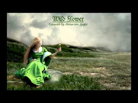 Celtic Music – Wild Flower