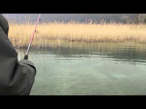 Rapala Rattlin Minnow Spoon 8 (RMSR-8) videó