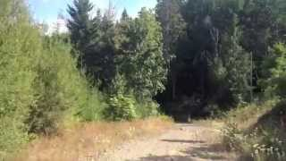 10. Does The Polaris Ranger Suck At Hauling Wood?