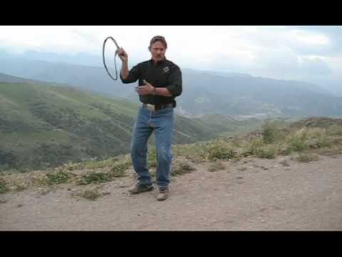 Master The Bullwhip