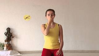 Kapalabhati & Anuloma Viloma – Pranayama Yoga Breathing