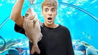 Video i went to a CATCH YOUR OWN FOOD restaurant !!! MP3, 3GP, MP4, WEBM, AVI, FLV Juni 2019
