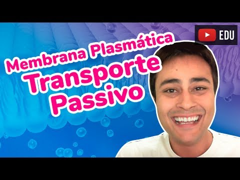 Membrana Plasmática - Transporte Passivo - Prof. Paulo Jubilut