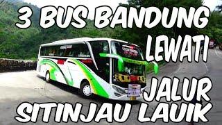 Video Tiga Bus Pariwisata Bandung Melewati Jalur Sitinjau Lauik MP3, 3GP, MP4, WEBM, AVI, FLV Mei 2019