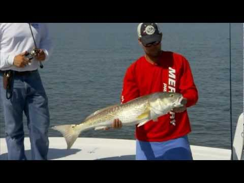 "Into The Blue: ""Topwater Redfish"""