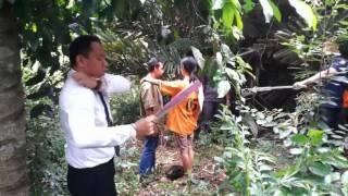 Video Usai Bercumbu, Widiya Bunuh Kekasihnya MP3, 3GP, MP4, WEBM, AVI, FLV November 2018