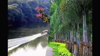 Sai Yok (Kanchanaburi) Thailand  city images : Baan Thittawan Resort, Sai Yok, Kanchanaburi, Thailand.