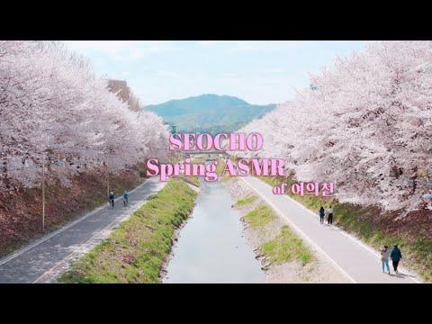 [SEOCHO ASMR] 서초 여의천의 봄 소리🎶 함께 들어요🎧 Seocho Spring ASMR of 여의천🌸