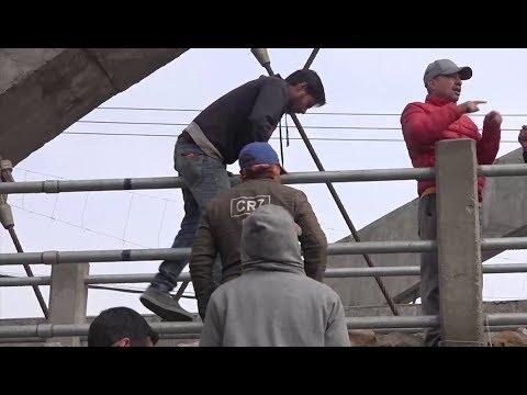 (का.म.पा वडा नं. ११ मा निर्माणाधिन अार्क ब्रीज (पुल) ले सर्वसाधारणलाइ अावतजावतमा सास्ती - Duration: 6 minutes, 6 ...)