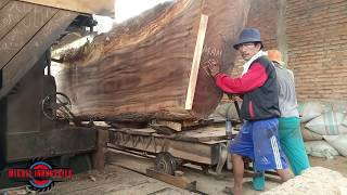 Video SAWING GIANT WOOD IN THE SAWMILL MP3, 3GP, MP4, WEBM, AVI, FLV April 2019