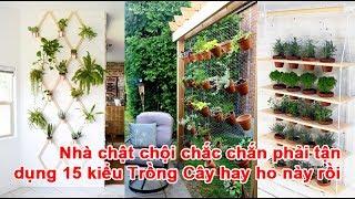 Nhà chật chội chắc chắn phải tận dụng 15 kiểu Trồng Cây hay ho này rồikiểu Trồng Cây, phương pháp trồng cây, ý tưởng trồng cây, vườn câyTheo emdep.vn