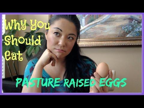 Conventional vs Organic Eggs