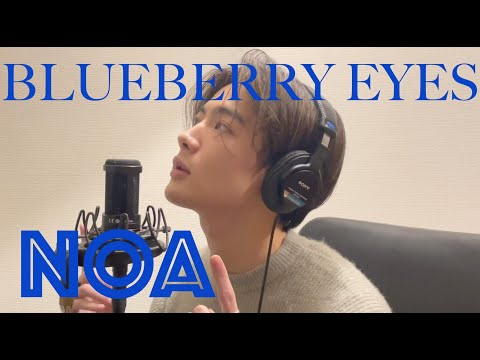 MAX - Blueberry Eyes (NOA COVER)