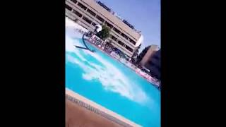 Opening Show for Lebanese Swimming Championship 2017