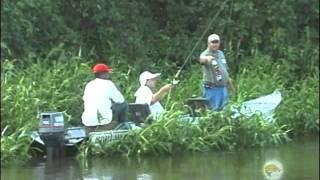 Pesca Dinâmica - Pescaria No Pantanal Mato-Grossense - Parte - 2