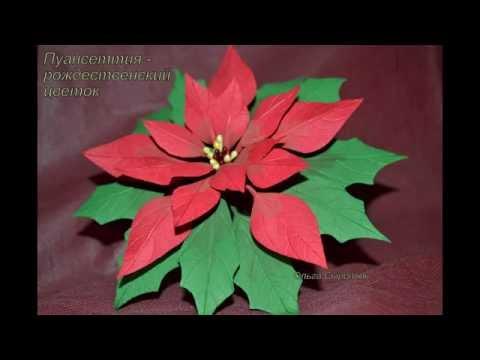 Рождественская звезда из фоамирана мастер класс с пошаговым