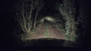 Video Night drive in creepy forest - zepter00 MP3, 3GP, MP4, WEBM, AVI, FLV Agustus 2018