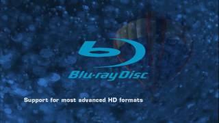 Nvidia PureVideo HD 1080p Test