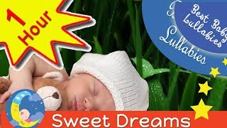 1HR RAIN Songs Put Baby To Sleep Lyrics-Baby Lullaby Lullabies Bedtime Relaxing Music Rain Falling full download video download mp3 download music download