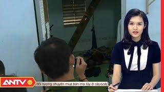 Video An ninh ngày mới hôm nay | Tin tức 24h Việt Nam | Tin nóng mới nhất ngày 23/01/2019 | ANTV MP3, 3GP, MP4, WEBM, AVI, FLV Januari 2019
