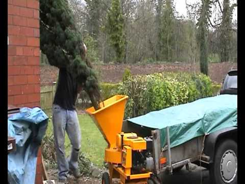 Homemade wood chipper eating Holly and Conifer.