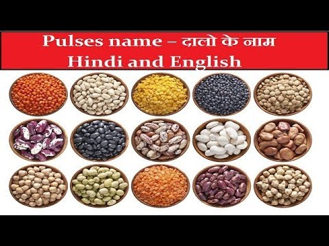 PULSES NAMES - दालो के नाम  | LEARN PULSES NAMES ENGLISH TO HINDI WITH SID WEB TECH