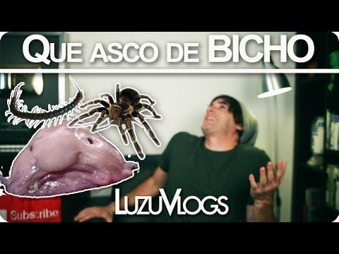 QUE ASCO DE BICHO! – LuzuVlogs