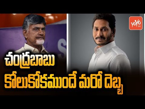 YS Jagan Master Plan on Chandrababu Naidu | YSRCP Vs TDP | Sarpanch, MPTC, ZPTC Elections | YOYO TV