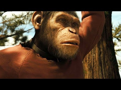 Caesar Growing Up Scene - Rise of the Planet of the Apes (2011) Movie Clip HD