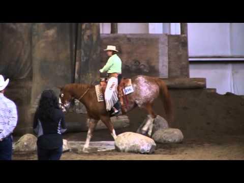 Oregon Horse Center Mountain Trail Clinic Fall 2012