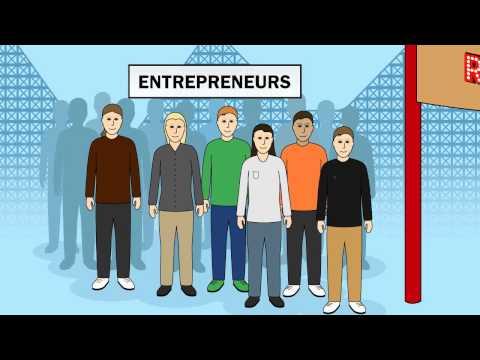 The Entrepreneur Rollercoaster