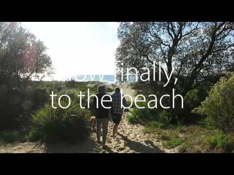 Moruya Heads - Dolphin Beach
