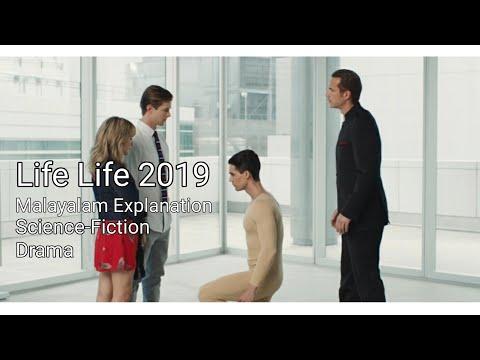 Life Like 2019| Malayalam Explanation| Pakka Local Film