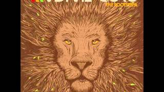 Video Radikal Guru - The Rootstepa (Full Album) MP3, 3GP, MP4, WEBM, AVI, FLV September 2019