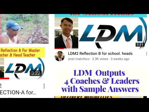 LDM2 REFLECTION FOR LAC LEADERS
