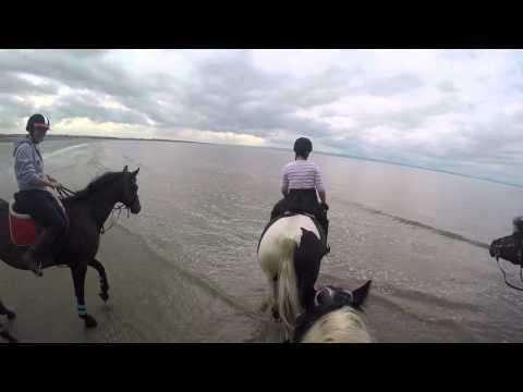Horse riding on Brean Beach Sept 2015