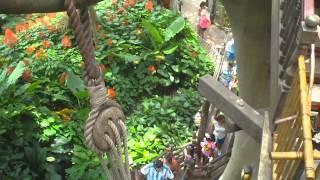 Treehouse at Disney World Florida.