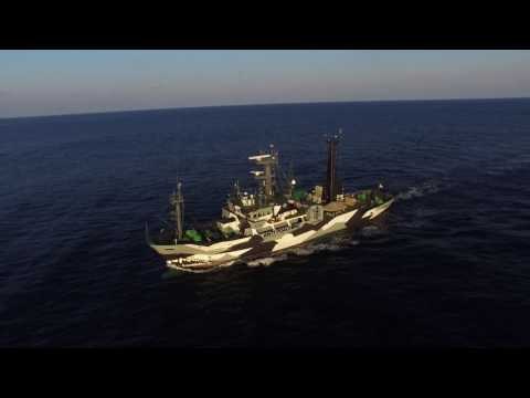 Sam Simon arrives in Mexico for Operation Milagro III