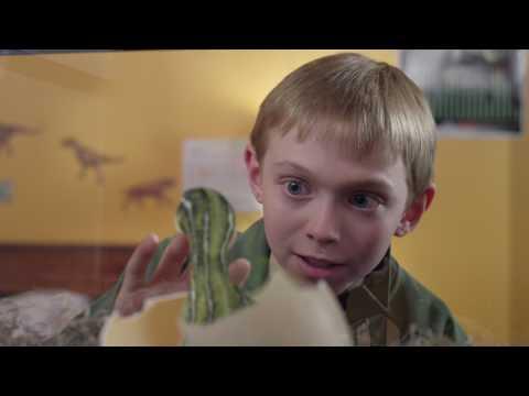 Jurassic School - Trailer