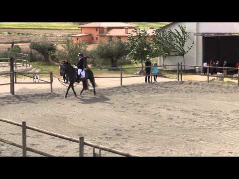 3ª Fase Campeonato Navarro Doma Clásica y JDN Nivel 1 (3)