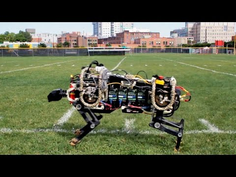 MIT s Robot Cheetah Now Runs Free Without Cables Or a