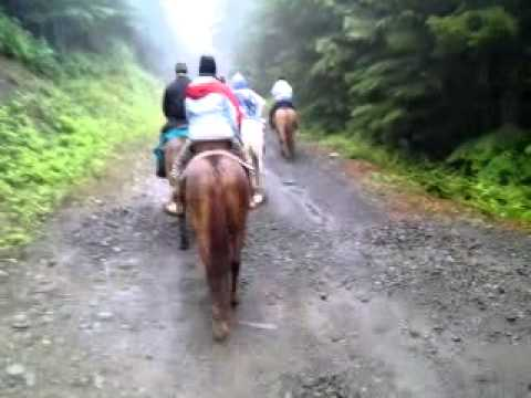 Horseback riding in Northern Oregon