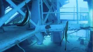 Scuba Diving The HTMS Chang Wreck, Ko Chang, Thailand