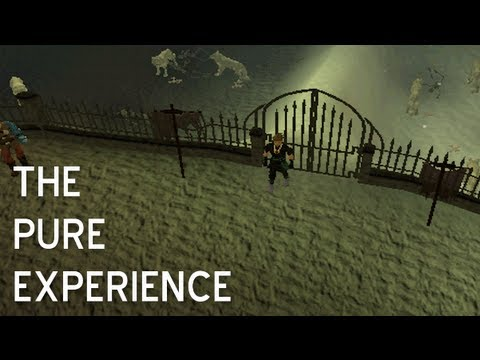 The Pure Experience - Turmoil Pure Updates/Skills/Quests