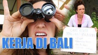 Video The Best Job in Bali (Pekerjaan paling Bagus di Bali) MP3, 3GP, MP4, WEBM, AVI, FLV Januari 2019