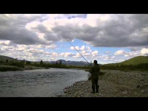 рыбалка на реке тунгуска еао