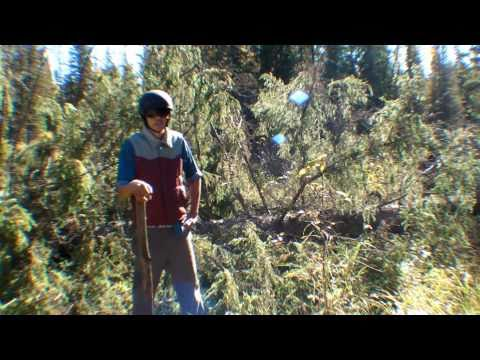 Canadian Mountain Biking