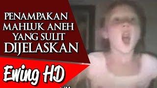Video 5 Penampakan Mahluk Aneh yang Sulit Dijelaskan - Part 3 | #MalamJumat - Eps. 67 MP3, 3GP, MP4, WEBM, AVI, FLV Agustus 2018