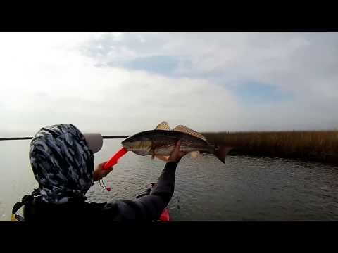 KAYAK FISHING – November Redfish:   Episode 3        (11 22 2013)